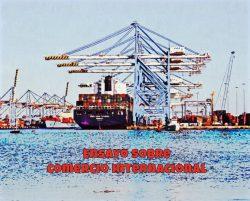 Ensayo sobre Comercio Internacional