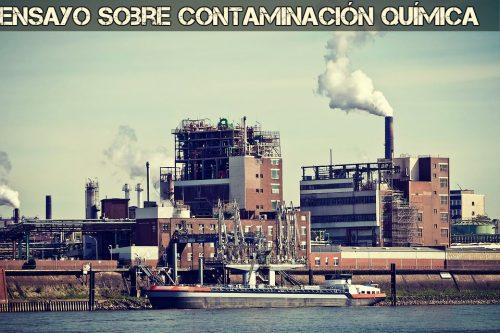 Ensayo sobre contaminacion