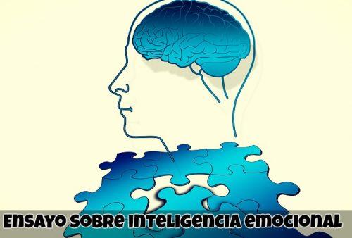 Ensayo sobre inteligencia emocional
