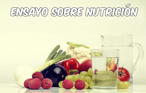 Ensayo sobre nutrición