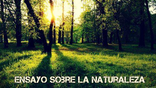 Ensayo sobre naturaleza