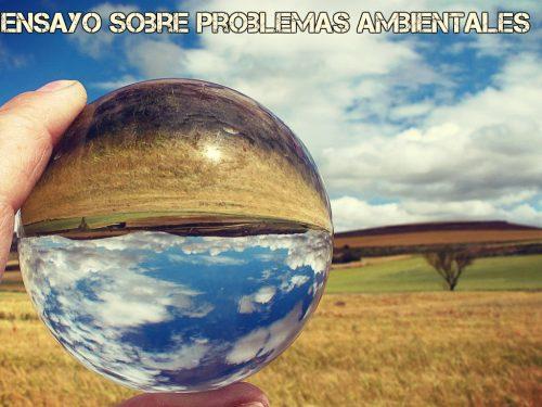 Ensayo sobre problemas ambientales