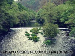 Ensayo sobre recursos naturales